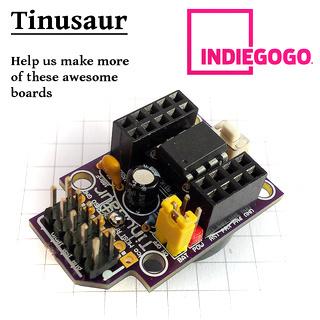 tinusaur_project_crowdfunding_06b_s320x320fx1